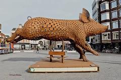 Kunstwerk (Karin Michies) Tags: rondjeutrecht utrecht utrechtcity kunstwerk varken neude centrum