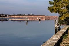 Lazzareto vecchio 3 - Venezia (gianmaria.colognese) Tags: venezia lido alberi trees pini pine lazzaretovecchio mattoni lagoon acqua water riflessi bricole