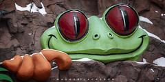NIagara Falls Ontario 2019 (John Hoadley) Tags: rainforestcafe niagarafalls ontario 2019 february canon 7dmarkii 100400 f5 iso250 frog