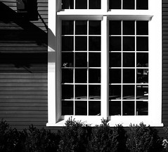 Window (Photo Alan) Tags: stilllife blackwhite blackandwhite monochrome windows window leicam10 leica