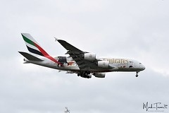 Manchester Airport 16th March 2019 @emirates A6-EER (United for Wildlife Livery) Airbus A380-861 #emirates #airbus #A380 #ManchesterAirport #MAN #EGCC #avgeek #POTN #worldofspotting #airportmagazine #aviation #aviationlovers #aviationphotography #loveplan (sirlordio) Tags: ifttt instagram manchester airport 16th march 2019 emirates a6eer united for wildlife livery airbus a380861 a380 manchesterairport man egcc avgeek potn worldofspotting airportmagazine aviation aviationlovers aviationphotography loveplanespot avion4u baviation instaaviation instagramaviation megaaviation megaplane planespotting photooftheday aircraft aviationphotos planephotography