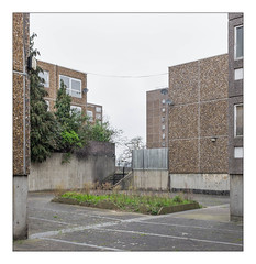 The Built Environment, South East London, England. (Joseph O'Malley64) Tags: thebuiltenvironment newtopography newtopographics manmadeenvironment manmadestructures buildings structures abandonedhousingestate abandoned derelict councilestate housingestate counciltenants housingassociations privateownership housing homes dwellings abodes vacant awaitingdemolition demolition highdensityhousing change southeastlondon london england uk britain british greatbritain prefabricatedconcretepanels steelreinforcedconcretestructures reinforcedconcretestructure concretestructure texturedconcrete concrete blocksofflats flats towerblock doubleglazedwindows doubleglazing upvcdoubleglazing windows pavement pavingslabs tarmac flowerbed steps railings stairrail woodenfencingpanels fencepanels lamps lighting satellitedishes wiring electricalwiring parapet ornamentalpines trees buddleia shrubs grass draincover gutter urban urbanlandscape leylandii architecture urbanarchitecture architecturalphotography documentaryphotography britishdocumentaryphotography accuracyprecision