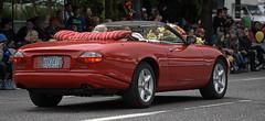 Jaguar Convertible (Scott 97006) Tags: car vehicle jag jaguar bouquet audience street parade convertible rose
