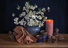 Still Life With Dogwood (mevans4272) Tags: dogwood pottery candle pinecones life still