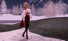 In Winter #1 (vocalev) Tags: snow winter trees purse beauty fashion red white azoury coco rocks