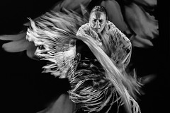 Flamenco Dancer (TerryCym) Tags: spain madrid flamencotheatremadrid flickrclickx flamenco dance europe españa woman blackandwhite