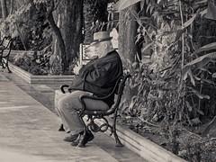 Sleeping . (Franc Le Blanc .) Tags: people sit sitting seated
