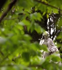 """Cincinnati - Spring Grove Cemetery & Arboretum """"Guidance"""" (David Paul Ohmer) Tags: cincinnati ohio spring grove cemetery arboretum"""