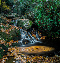 Stay Centered (Thanks for 1,000,000+ views) Tags: great smoky mountains national park gsmnp landscape frame full fx outdoor f28 24mm d750 nikon copyright black blue green tree lightroom diffused light shade natural depth field pictures autumn fall winter grass fairytale wonderland forest photographer golden hour travel sun prime water stream torrent flood river rock boulder covered moss nikkor tremont