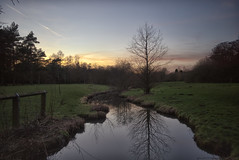 Golden Acre dusk (EricMakPhotography) Tags: walk park dusk reflection water glow train tree