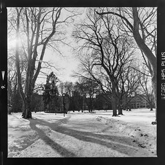 Gage park in the winter #1 (Micah Bowerbank Photography) Tags: hamilton ontario canada ca