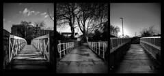 Three Crossings