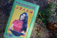 """""""Pure Soyabean Oil"""" (Eric Flexyourhead) Tags: ndsm ndsmwerf nederlandschedokenscheepsbouwmaatschappij amsterdamnoord amsterdam netherlands holland nederland city urban detail fragment random trash rubbish discarded tin container puresoyabeanoil levo green yellow sonyalphaa7 zeisssonnartfe35mmf28za zeiss 35mmf28"""