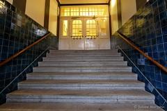 Treppe zum Licht / Golden Light stairway (Sockenhummel) Tags: badsegeberg gemeinschaftsschule schule treppe treppenhaus stairs stairway eingang entrance tor tür portal school staircase stairwell escaliers stufen architektur steps gebäude haus architecture fuji xt10