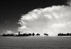 the cloud (domenicaviehberger) Tags: clouds bnwphotography bnw winter winterzeit snow ambosswolke himmelskörper himmelsfarben schwarzweiss white outdoor teamwork coldlandescape horizont kraft naturschönheiten naturgeschehen wolkenspiel sky