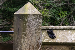 Lost Sock (separatesunsets) Tags: architecture deanvillage edinburgh old scotland stockbrigde waterofleith