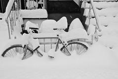 Même jour, autre vélo/Same day, another bike (bob august) Tags: 2019 2019©rpd'aoust aperture3 bw bicyclette bike blackwhite canada d90 hiverwinter janvier montréal neige nikkor1735mm nikon nikond90 noiretblanc snow vélo villeray