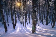 Forca d'Acero: neve / snow (Abulafia82) Tags: pentax pentaxk5 k5 ricoh ricohimaging paesaggio paesaggi landscapes landscape montagna montagne monti mounts mountains abulafia 2019 ciociaria lazio italia italy forcadacero appennini