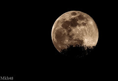 Super full moon 19/02/19 (paul.porral) Tags: flickr ngc moon nature night blackandwhite bnw nb sky nocturne outside ciel mono monochrome light nuit supermoon astrophotography universe space astronomy luna lunaire canon canon7d lune