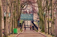 117 - Paris - Février 2019 - le cimetière de Montmartre (paspog) Tags: paris france cemetery cimetière friedhof février februar february 2019 cimetièredemontmartre