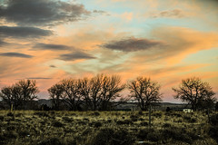Beautiful Colored Clouds (wyojones) Tags: wyoming cody clouds sunset pink orange tree cottonwood silhouette pickup house fence dusk hills