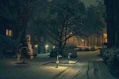 Home (Somewhere in Helsinki) (Laser Kola) Tags: cinematicphotography nightphotography nightlights moody lasseerkola laserkola streetphotography winter snow blizzard fujifilm x100f 35mm f2 midnight citylights urbanphotography helsinki finland wonderland somewhere