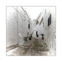 Ruelle (Jean-Louis DUMAS) Tags: pouilles italia italie town village street rue ruelle route bâtiment boutique monochrome personnes voyage travel trip carré square escalier stair marches