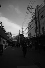 Tokyo, March 17, 2019_36 (Satoshi Kondo) Tags: bw bnw blackandwhite blackandwhitephotography blackandwhitephoto bnwphoto bwphoto bnwphotography bwphotography blackandwhitepoto blackandwhitepotography monochrome tokyo asakua ricoh ricohgr gr3 gr street streetphoto streetsnap streetphotography streets snap jpg