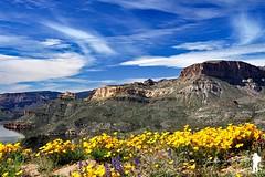Apache Trail 3 (Yale Creek) Tags: arizona apachetrail landscape