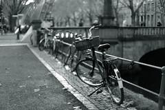 bokeh@Kö-Graben, Düsseldorf (Amselchen) Tags: bike bicycle bnw blackandwhite bokeh blur dof depthoffield street city canon ef50mmf14usm canoneos6dmarkii