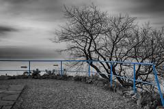 Punto panoramico (Damiano Sansoni) Tags: trieste mare damiano colors black blackwhite love sigma sony vento amore panorama italia italy damianosansoni reflex a77 ferie
