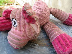 Poor Lil Piggy (Vicki LW) Tags: ourdailychallenge odc threadbare dogtoy pig cmwd pink 132019 13119