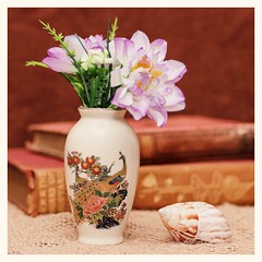 Vase with Flowers and a Sea Shell (N.the.Kudzu) Tags: tabletop stilllife vase flowers seashells books canondslr meike 85mmf28 square lightroom preset photoscape frame canon430ex