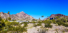 Desert Living (Buck--Fever) Tags: arizona arizonaskies arizonadesert landscape mountains mountain samsung8s
