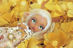 ☆ Yellow is the color of joy ☆ (Shimiro Doll Photography) Tags: bjd doll dollphotography bjdphotography portrait nikon balljointeddoll custombjd toy pullip dolls toys cute kawaii yosd pastelgirl pastelfashion pastel lillycat cerisedolls toyphotography poulpy lillycatpoulpy cerisedollspoulpy