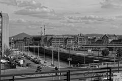 Charleroi, la Sambre, la gare du Sud et le terril du Boubier en arrière plan (Olivier_1954) Tags: charleroi hainaut belgique be nb noiretblanc sambre gare terril