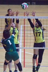 20180512_IMG_7295 (ko_en_volleyball_para) Tags: スポーツ sports バレーボール volleyball パラ para 聴覚障害 deaf the 18th national disabled competition hearing impaired area preliminary 2018 第18回 全国障害者スポーツ大会聴覚障害者バレーボール競技 地区予選大会 大田区体育館 otacity general gymnasium 栃木 tochigi 東京 tokyo
