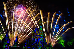 Happily Ever After Fireworks Show (Justy.C) Tags: disney disneyworld florida magickingdom mainstreetusa thehub wdw cinderellacastle fireworkphotography happilyeverafter orlando waltdisneyworld unitedstatesofamerica us