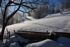 (*Vasek*) Tags: winter snow nature mountains czech moravia europe nikon d7100