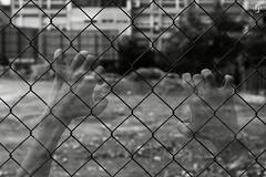 "Proyecto ""ciudad MALDITA"" (4/15) (nieves.valderrama) Tags: blackandwhite blackandwhiteperfection blackandwhitephotography blacknwhite bnw bw bwphotography city composition conceptualart contrast doubleexposure finalproject madrid malditaciudad monochrome multipleexposure nofilter personalproject photoshoot picoftheday storytelling town visualstory"
