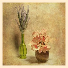 Vases and Flowers (N.the.Kudzu) Tags: tabletop stilllife green glass vases flowers canoneosm 7artisans25mmf18 2lilowls lightroom preset photoscape texture square
