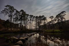 Sherberton Stepping Stones - Dartmoor (pm69photography.uk) Tags: sherbertonsteppingstones steppingstones devon dartmoor nightsky stars longexposure river ilovedevon ilce7rm3 ilovedartmoor trees tree southwest sonya7r3 sonya7riii atmospheric atmosphere