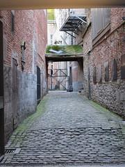 Brick paved alley, Namur, Belgium (Paul McClure DC) Tags: belgium belgique wallonie wallonia feb2018 namur namen ardennes historic architecture