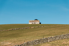 Solitary Barn, Lingy Hill, Harwood Feb 2019 (Richard Laidler) Tags: agriculture barn bluesky bright buildings clear cloudless countydurham fine globalgeopark harwood hill hillside landscape northeastengland northpennines northpenninesaonb pennine sun sunlight sunny sunshine teesdale uk upland upper upperteesdale whitewashed winter