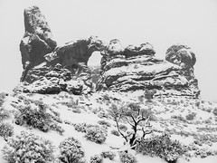 Turret Arch B&W (xjblue) Tags: 2018 archesnationalpark newyearsweekend southernutah utah canyon canyonlands cold desert governmentshutdown sandstone snow trip winter landscape natural span naturalarch storm