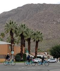 February 13, 2019 (52) (gaymay) Tags: california desert gay love palmsprings riversidecounty coachellavalley sonorandesert shopping mountain snow bicycle riding bike
