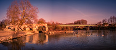 Sunset on the Marne river (K r y s) Tags: 77 landscape bridge extérieurs nature reflection reflets panorama fra passerelle parc blueskies arbre crépuscule park bordsdemarne ensoleillement seineetmarne france soir cielbleu fleuve chelles outdoor ruin evening ruine pont extérieur îledefrance waterscape coucherdesoleil bluesky reflet river ciel hiver afternoon eau parks outdoors 2019 arbres parcs
