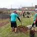 Newell_Elem_Tree_Planting_2019  (84)