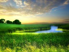Prairie pond 33 (mrbillt6) Tags: landscape rural prairie pond waters grass field sky serene relaxing photoart summer outdoors country countryside northdakota