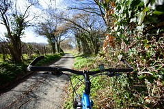 2019 Bike 180, Ride 14, 1st March. (Photopedaler) Tags: 2019bike180 cornishcycling countrylanes bicycle backroads springcycling springsunshine